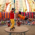ichtv_20190407_ZDF_Lion-Circus_030_DSC_9172_2000
