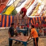 ichtv_20190407_ZDF_Lion-Circus_046_DSC01756_2000