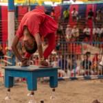 ichtv_20190407_ZDF_Lion-Circus_047_DSC01771_2000