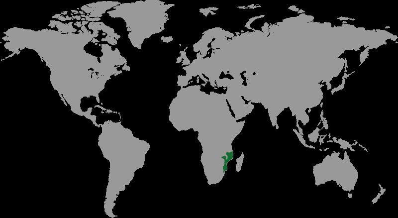 weltkarte_projekt_fundraising_fotografie_aktion-deutschland-hilft_mozambik
