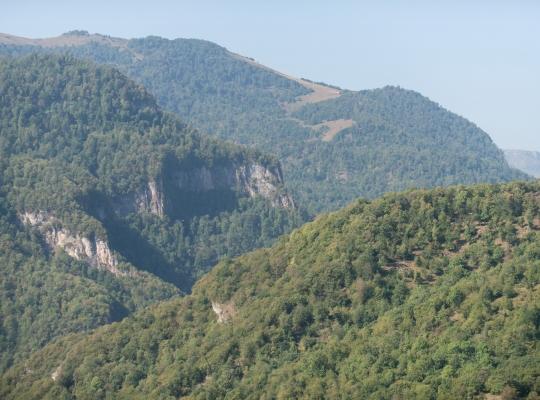 Film Entwicklungszusammenarbeit: Nachhaltiges Waldmanagement in Armenien