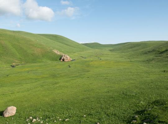 Film Entwicklungszusammenarbeit: Nachhaltiges Weidenmanagement in Armenien